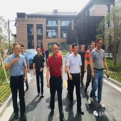 股东单位九星村领导及九星商会会长等莅临五村园考察指导